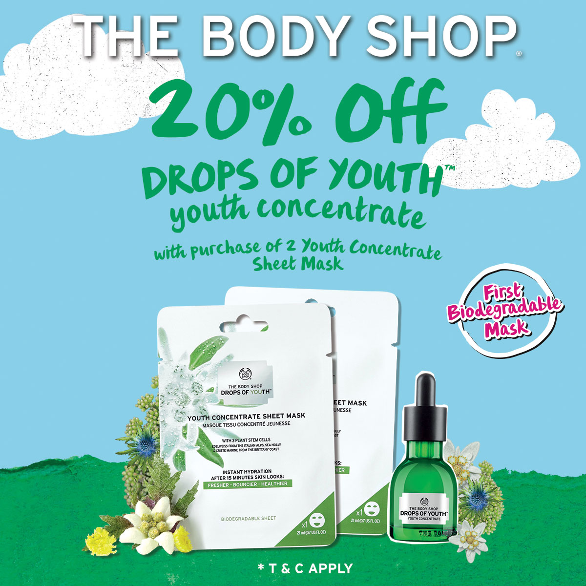 Body Shop Promotion