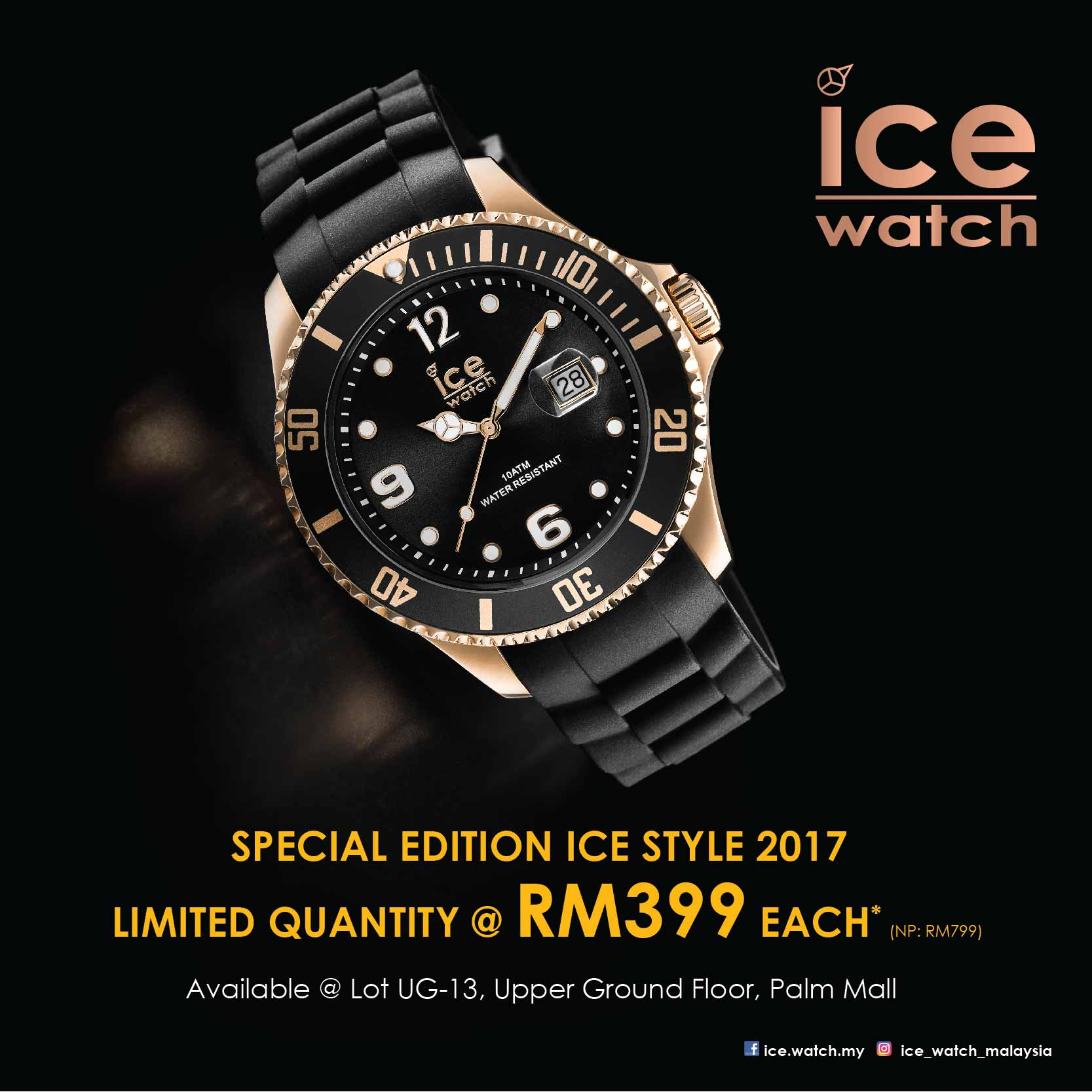 Special Edition ICE 2017