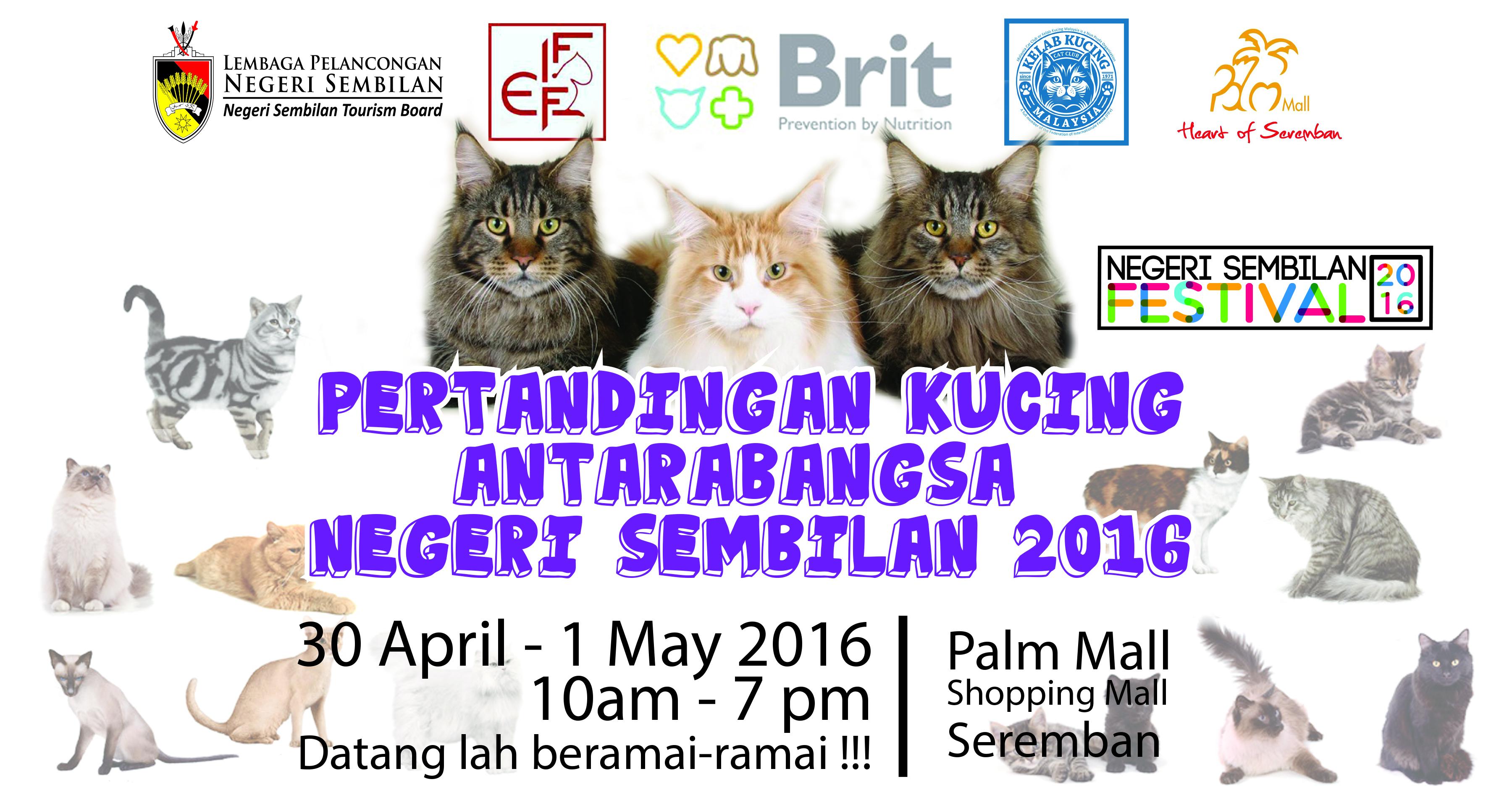 Pertandingan Kucing Antarabangsa Negeri Sembilan 2016